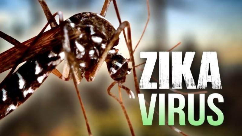 ddb9cb03-77d9-4586-8c09-024eef9c57a4-large16x9_ZikaVirus