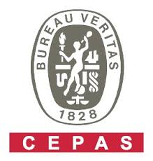 www.bureauveritas.it